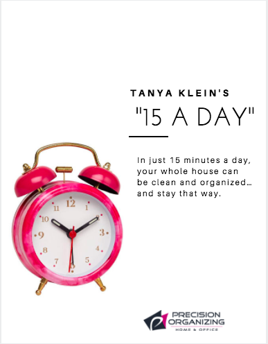 15 Minutes A Day By Tanya Klein | Book Cover